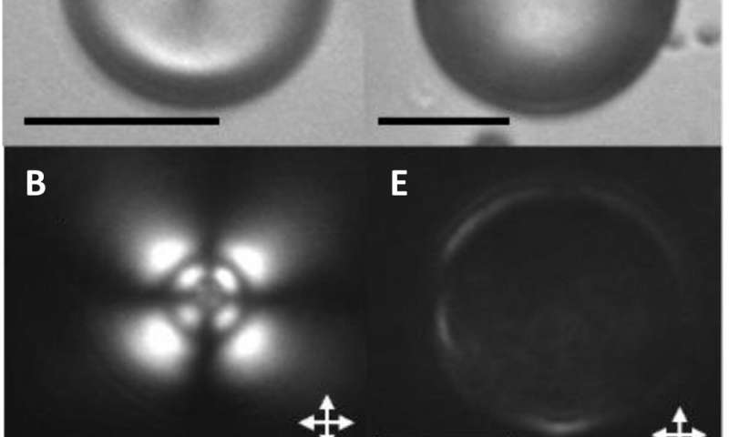Programming van der Waals interactions with complex symmetries into microparticles using liquid crystallinity
