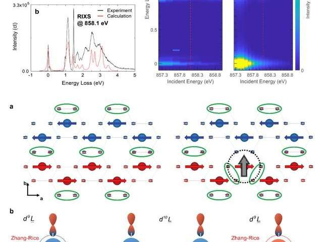 Quantum exciton found in magnetic van der Waals material NiPS3