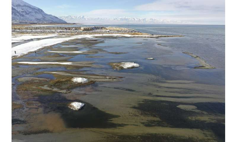 Rare salt formations appear along the Great Salt Lake