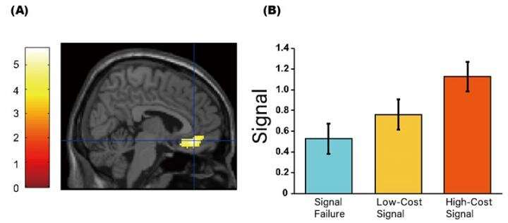 Relationship value and economic value are evaluated by the same part of the brain