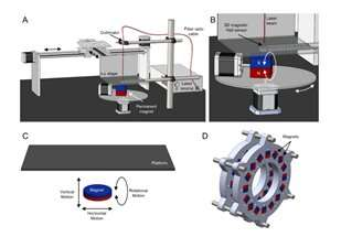 Reprogrammable shape morphing of magnetic soft machines