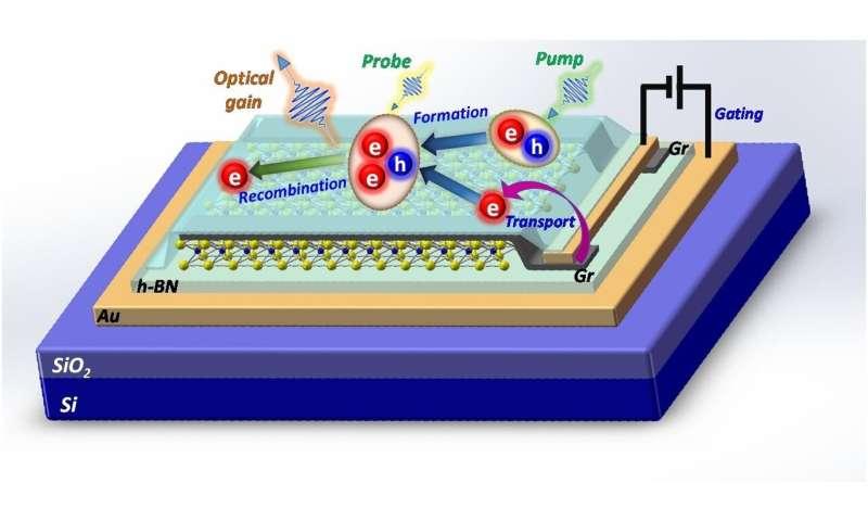 Shedding new light on nanolasers using 2-D semiconductors