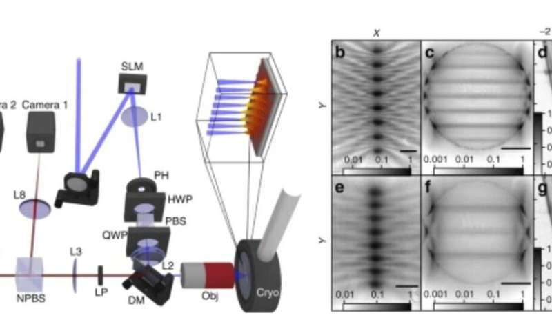 Skoltech research puts exciton-polaritons in their place with new artificial laser-built lattices
