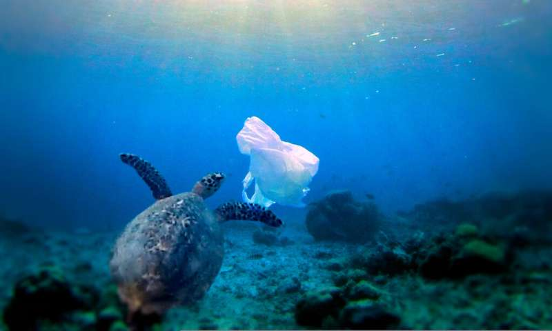 Surface clean-up technology won't solve ocean plastic problem