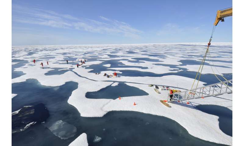 Synthesis study demonstrates phytoplankton can bloom below Arctic sea ice