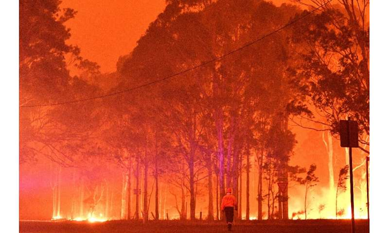 Temperatures were likewise higher than normal in New South Wales in Australia, where massive bushfires devastated large areas of