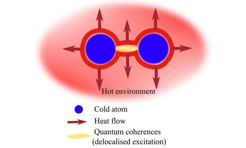 The natural direction of heat flows -- from hot to cold -- can be reversed thanks to quantum effects