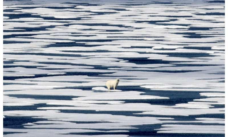 UN climate chief: pledges by big polluters boost Paris hopes