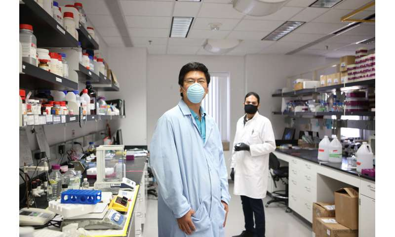 UTEP research reveals more about path bacterial pathogen travels to cause tuberculosis