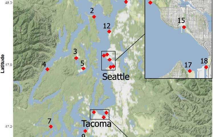What's in Puget sound? New technique casts a wide net for concerning chemicals