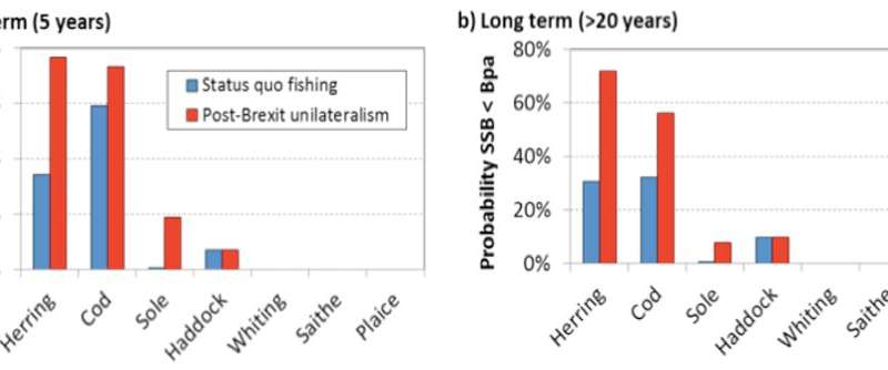 Without a Brexit fisheries deal, herring and other North Sea species face dire future – new research