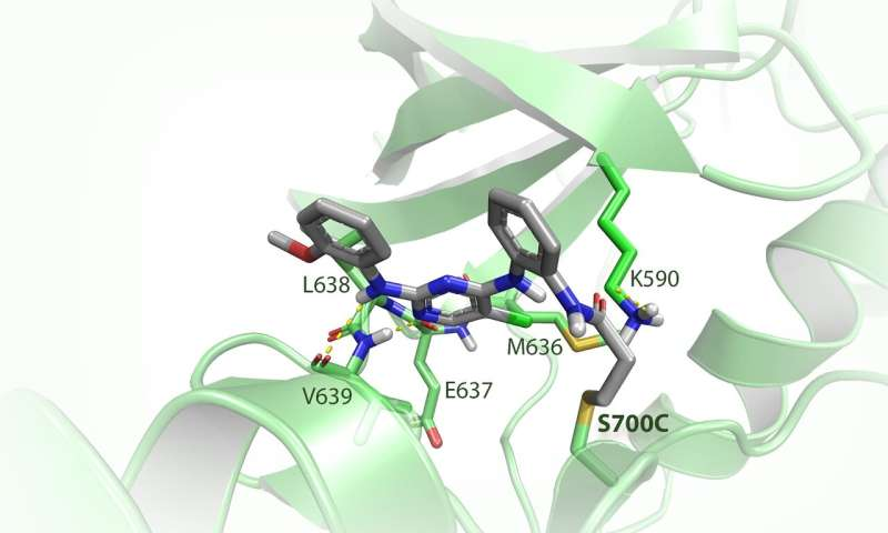 New technique offers chemists unprecedented control in drug research
