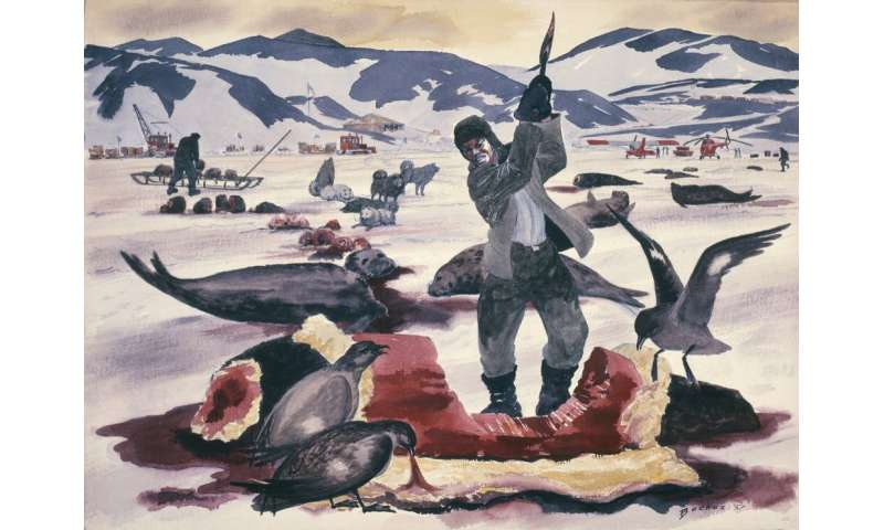 200 years ago, people discovered Antarctica – and began slaughtering its animals to near extinction for profit