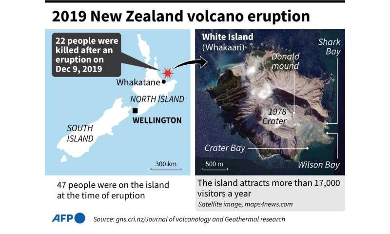 2019 New Zealand volcano