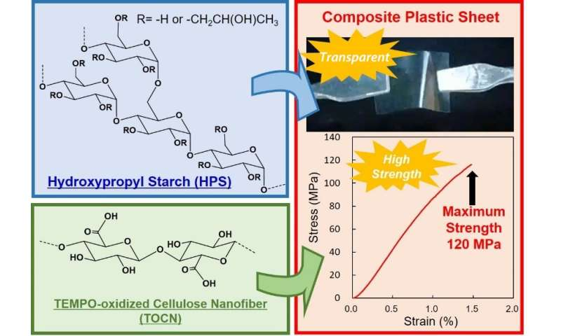 Researchers create water-degradable plastic combining starch and cellulose