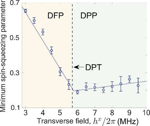 Researchers perform quantum simulation of dynamical phase transitions