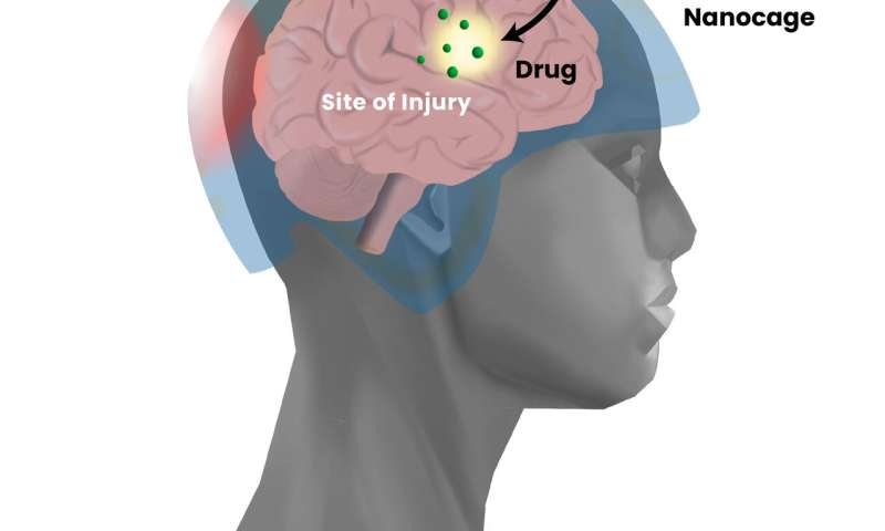 Development of precision drug delivery tool to treat traumatic brain injury