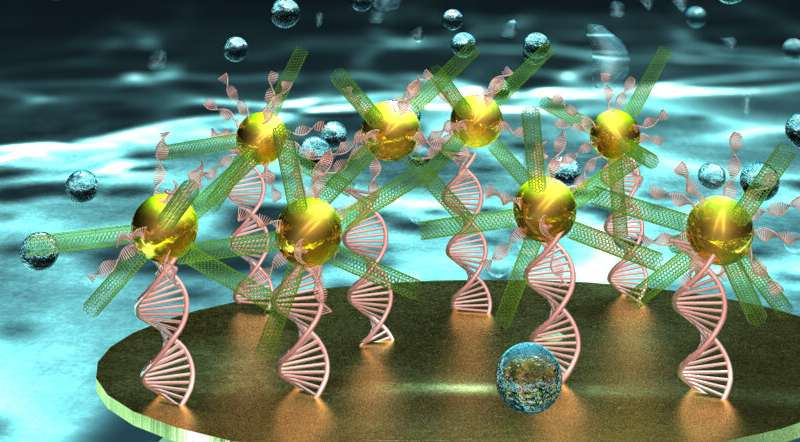 Researchers create unique DNA biosensor for early stage disease detection