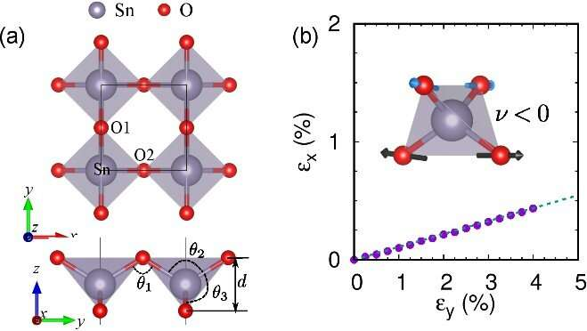 Researchers make theoretical prediction of 2-D semiconductor tin dioxide