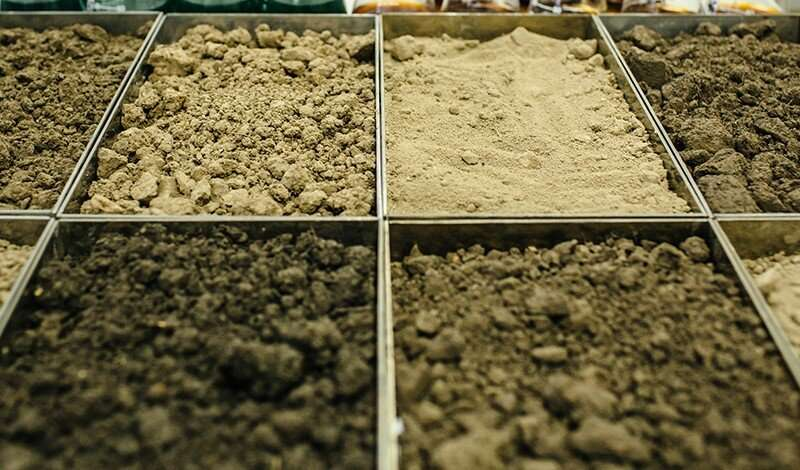 New study reveals that soil is a significant carbon sequestration driver