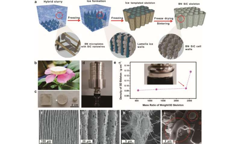 Scientists develop ice-templated filler skeleton with enhanced thermal conductivity
