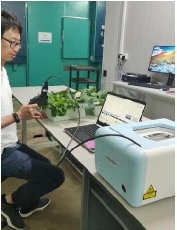 Los investigadores diseñan un dispositivo portátil para la detección rápida del estrés de las plantas