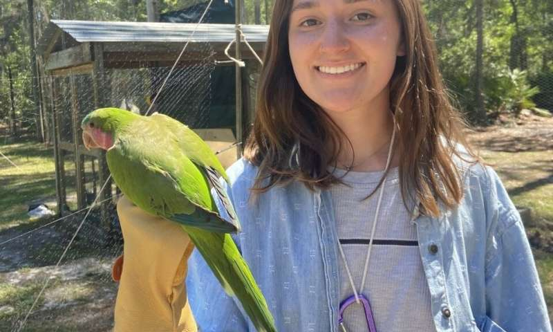 Birds use social networks to pick opponents
