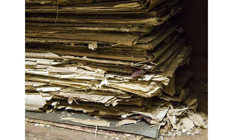 Building a digital archive for decaying paper documents