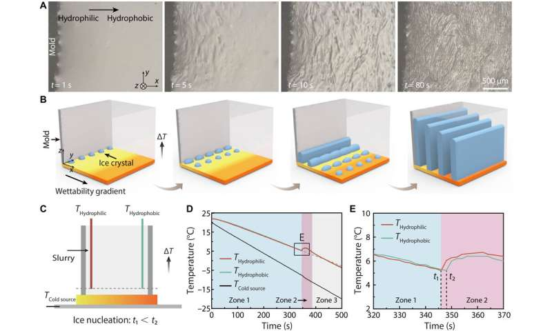 Controlling ice formation on gradient wettability surfaces for high-performance bioinspired materials