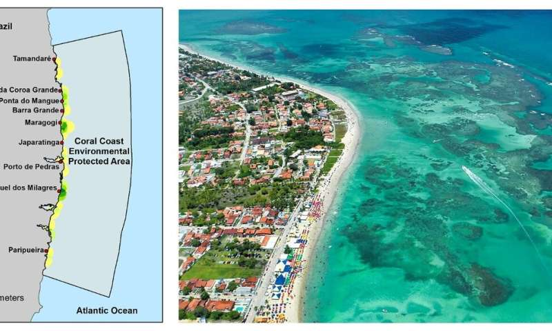 Emerging digital tools for marine and freshwater conservation