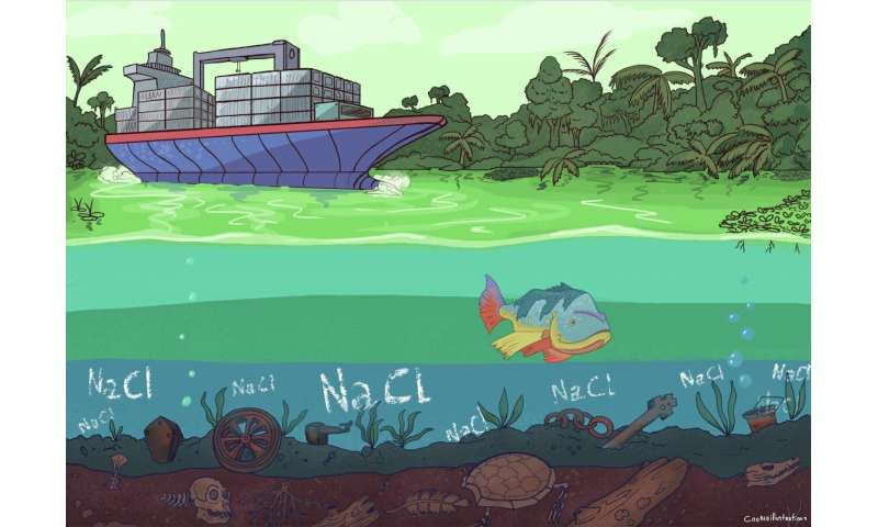 Long-term consequences of river damming in the Panama Canal
