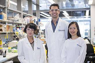 New technology helps in hunt for new cancer drug combinations