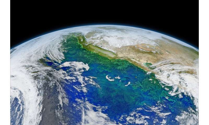 Ocean acidification prediction now possible years in advance