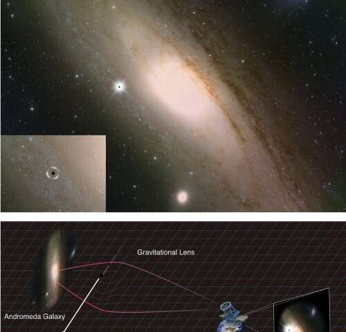 İlkel kara delikler ve çoklu evrenden karanlık madde arayışı