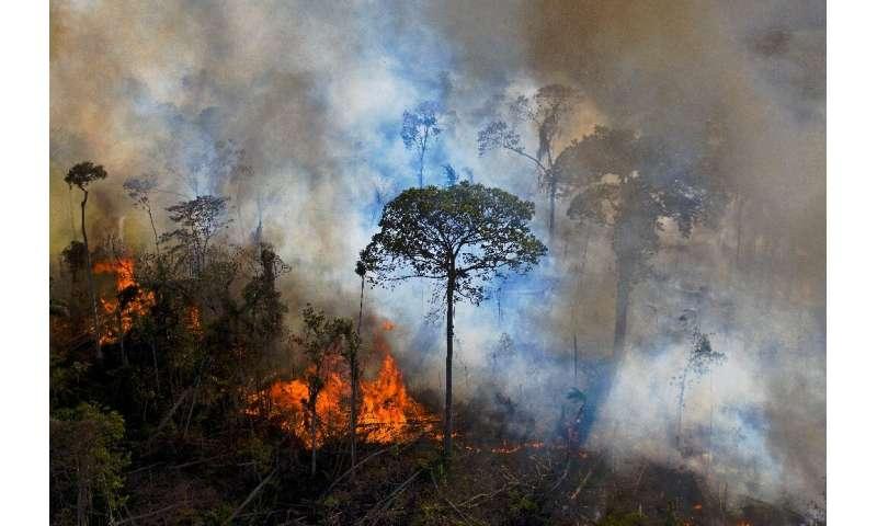 Sale humo de un fuego encendido ilegalmente en la selva amazónica al sur de Novo Progresso en el estado de Pará de Brasil, en agosto de 2020