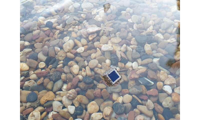 El sensor de calidad del agua alimentado por energía solar podría ayudar a los acuicultores a controlar la contaminación en estanques de forma remota