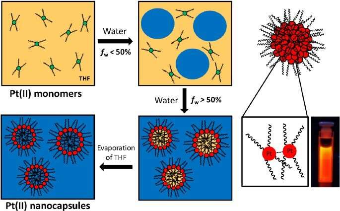 The applications of liquid crystals have been extended to drug encapsulation