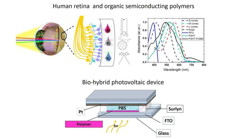 Development of a colour-sensitive inkjet-printed pixelated artificial retina model studied via an optoelectronic device