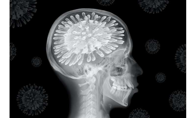 Coronavirus: the pandemic is changing our brains –  here are the remedies