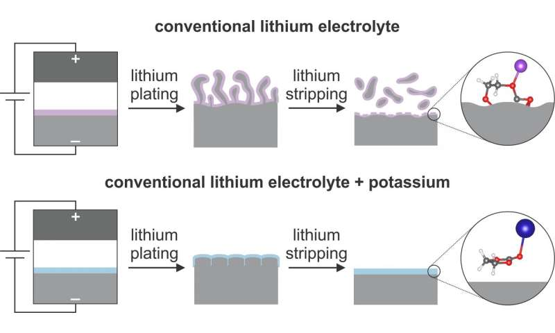 The new technique expands the next generation lithium metal battery