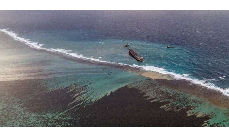 Aerial images showed huge stretches of crystal-clear seas around the marooned cargo ship stained an inky black