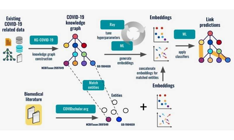 Clues to COVID-19 treatments could be hiding in existing data