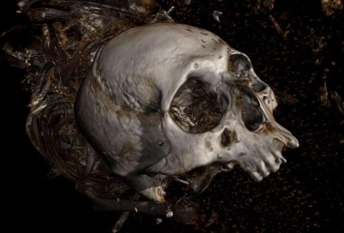 Mosaic X-rays reveal Peruvian mummy mysteries
