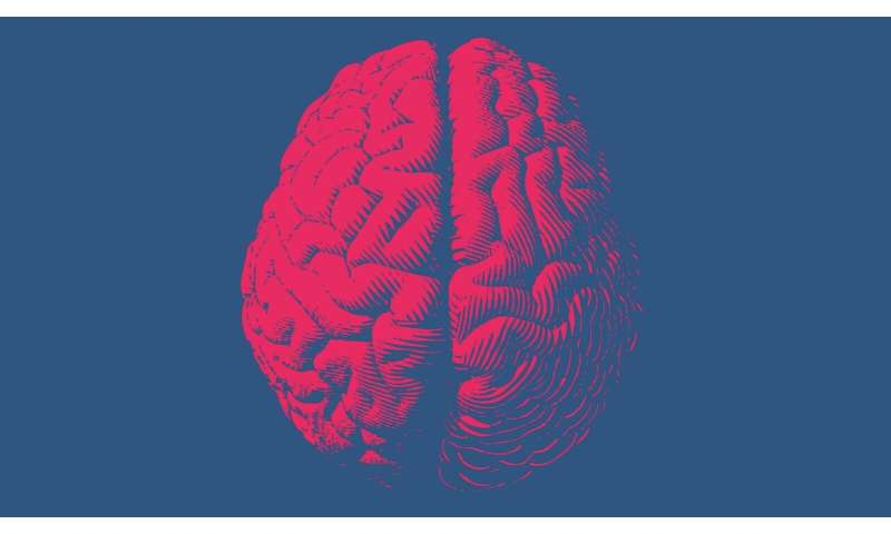 New material senses neurotransmitters in the brain