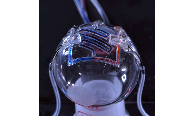 Researchers 3D print unique micro-scale fluid channels used for medical testing