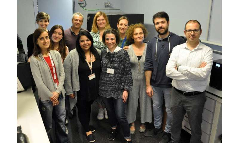 Researchers obtain the first complete genomes of the SARS-CoV2 virus in Spain