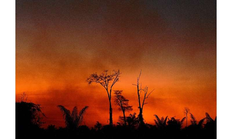 Smoke rises from a burnt area of land at the Xingu Indigenous Park, Mato Grosso state, Brazil, in the Amazon basin, on August 6,