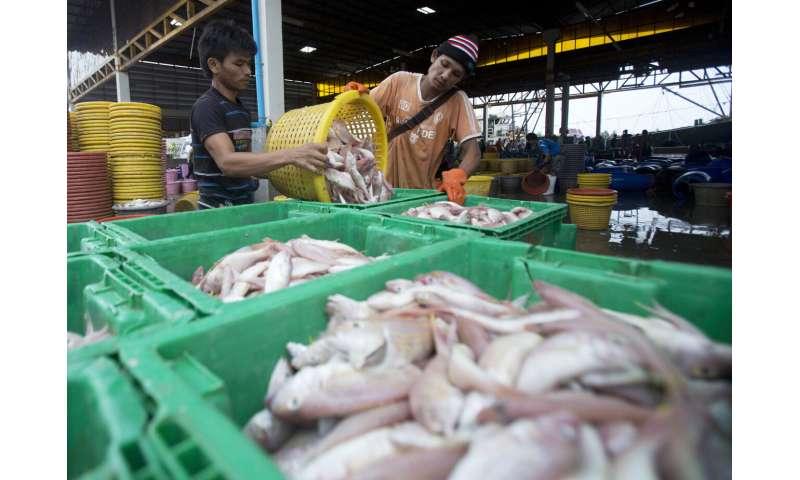 در تایلند 548 مورد ویروس جدید گزارش شده که بالاترین میزان افزایش روزانه است