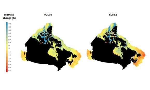 Climate change projections show significant regional differences for marine species and ecosystems in Canada's three oceans