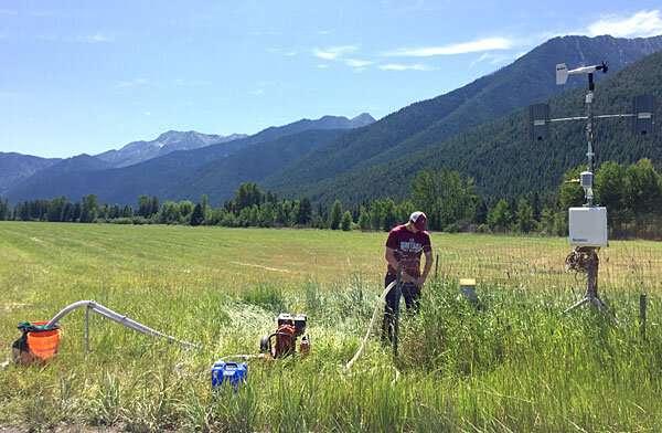 Researchers unlock mystery of subterranean stoneflies